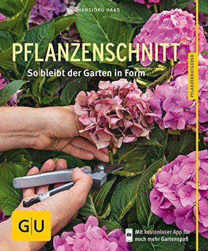 Pflanzenschnitt: So bleibt der Garten in Form -