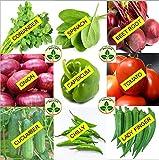 Home Garden Best Deals - Only for Organic ! Combo of Nine Kitchen Garden Hybrid Seeds !