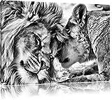 Monocrome, Kuschelnde Löwen, Format: 120x80 auf Leinwand, XXL riesige Bilder fertig gerahmt mit Keilrahmen, Kunstdruck auf Wandbild mit Rahmen, günstiger als Gemälde oder Ölbild, kein Poster oder Plakat