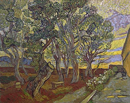 Berkin Arts Vincent Van Gogh Giclee Kunstdruckpapier Kunstdruck Kunstwerke Gemälde Reproduktion Poster Drucken(Der Garten des Asyls) #XZZ -