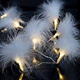 LED Batterie Lichterkette Fluffy mit Federn 10 Lichter warm weiß Indoor