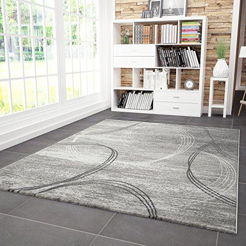 Vimoda classico soggiorno tappeto, molto spessa tessuto, linee curve motivo erica in grigio grigio, grigio, 120x170 cm
