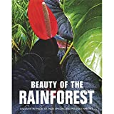 Beauty of The Rainforest (Large Format)