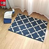 Die halle Tür mat mat Badezimmer WC-Tür mat Mat wc Wasser Badematte Teppich, 60 * 90 cm, Lane blau