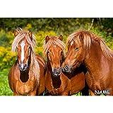alles-meine.de GmbH Puzzle 1000 Teile -  Horse Friends  - inkl. Name - Pferde / Wildpferde - Pfe..