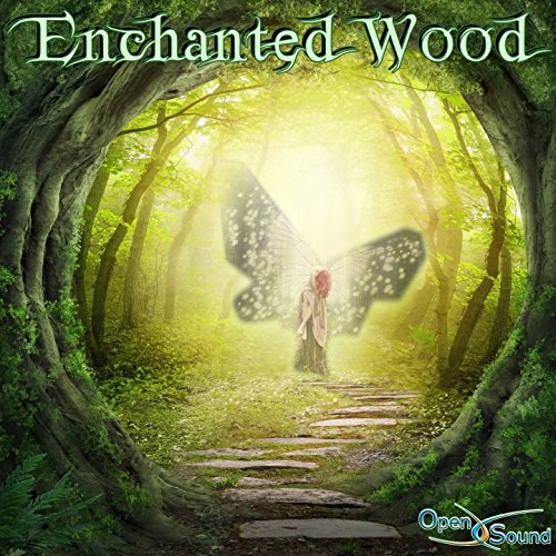 Enchanted Wood - Enchanted Woods