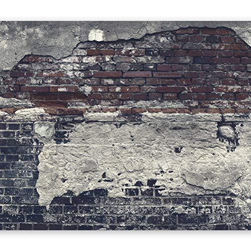 murando - Fototapete 400x280 cm - Vlies Tapete - Moderne Wanddeko - Design Tapete - Wandtapete - Wand Dekoration - Ziegel Ziegelstein f-A-0503-a-c