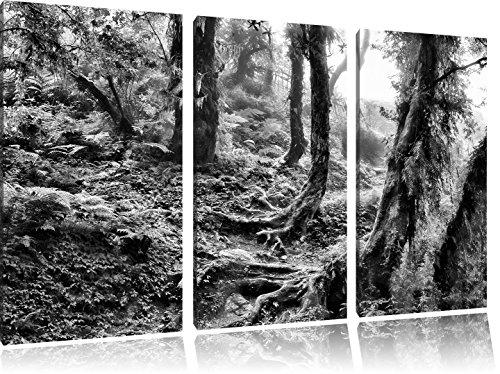 monocrome-foresta-pluviale-incontaminata-immagine-tela-immagine-3-pc-120x80-su-tela-xxl-immagini-eno