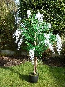 UK-Gardens Grandes Glycines artificielles 1.2m - en pot avec fleurs crème dans un pot en résine très résistant - Plante pour votre maison ou pour votre bureau ou plante d'intérieur