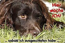 +++ Kleiner MÜNSTERLÄNDER - Metall WARNSCHILD Schild Hundeschild Sign - KLM 06 T15