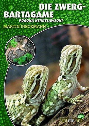 Die Zwergbartagame: Pogona henrylawsoni (Art für Art)