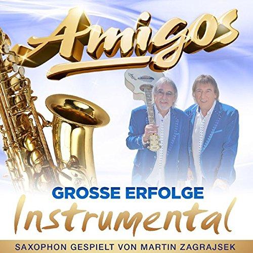 Große Erfolge - Instrumental (Saxophon gespielt von Martin Zagrajsek)