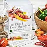 Lawn & Patio - Kit Chili & Paprika von Plant Theatre - 6 verschiedene Sorten zum Züchten - Ein tolles Geschenk