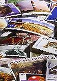 Leuchtturm 328485 Briefmarken-Sammel-Album, Einsteckbuch Stamp DIN A4, 16 Schwarze Seiten, unwattierter Einband