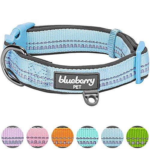 Blueberry Pet 1,5cm S 3M Reflektierendes Neopren-Gepolstertes Hundehalsband in Pastell-Blau, Kleine Halsbänder für Hunde