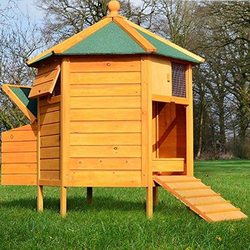 Zooprimus pollaio in legno pratico accogliente e robusto pollaio in legno di pino resistente alle intemperie pollaio 128 pavillon