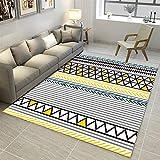 Insun Tapis de Salon Chambre Scandinave Moderne Design Tapis Déco Rectangle Antidérapant Lavable Style 5 80x120cm