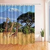 CDHBH Nationalpark von Kenia Afrika Decor Drei Giraffe auf Kilimanjaro Mount Polyester Stoff Wasserdicht Duschvorhänge 180,3x 180,3cm Haken im Lieferumfang Enthalten