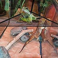 AUOKER Hamaca de Lagarto, Hamaca de Malla Transpirable Que Reduce el Nivel de estrés de lagartos y camaleón, Hamaca Repelente hábitat para dragón Anoles Geckos Serpientes con 3 ventosas