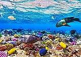 Fototapete Korallenriff mit Fische XL 350 x 245 cm - 7 Teile Vlies Tapete Wandtapete - Moderne Vliestapete - Wandbilder - Design Wanddeko - Wand Dekoration wandmotiv24