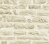 A.S. Création Papier Peint Intissé Best of Wood n Stone 2 nd Edition Papier peint imitation pierre Photo Pierre réaliste Papier peint Pierre Naturelle 10, 05 M x 0, 53 M Beige/crème fabriqué en Allemagne 355802 35580–2, Beige, Crème