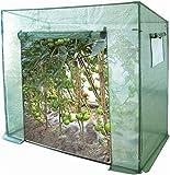 Foliengewächshaus für Tomaten/Gemüse - verstärkte Folie - Seitenfenster