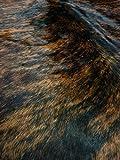 Sunshine Cowhides Teppich aus Kuhfell, Farbe: Rotes Dunkel Brindle, Größe Circa 220 x 200 cm DB1, Premium - Qualität von Pieles del Sol aus Spanien