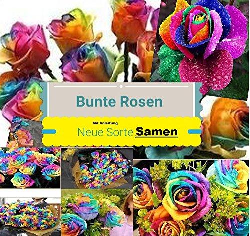 25x Regenbogen Rosen Blumensamen Saatgut Blumen Pflanze Anleitung für die Regenbogen Rosen Samen #48