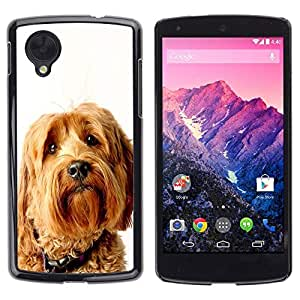 GIFT CHOICE / Schlank Hart Schutzhülle Tasche Hülle HandyHülle Slim Hard Protective Case SmartPhone Cover for LG Nexus 5 D820 D821 // Labradoodle Terrier Yellow Dog Fur //