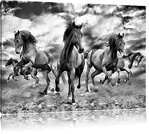 Monocrome, Western Cheval Cowboy, Taille: 60x40 sur toile, XXL énormes photos complètement encadrée avec civière, imprimé Art mural avec cadre moins cher que la peinture ou la peinture à l'huile, pas poster ou une