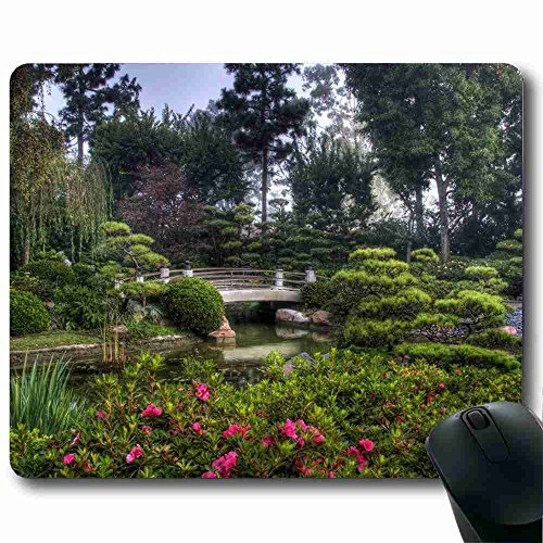 dolphin-cristiana-riese-lassen-mouse-pad-souris-dolphins-mouse-pad