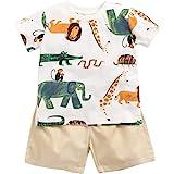Sanlutoz Algodón Bebé Conjuntos de ropa Verano Dibujos animados Recién nacido Camiseta + Shorts 2 piezas