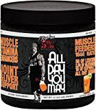 Rich Piana 5% Nutrition All Day You May 465 g Sweet Southern Tea