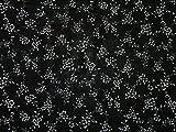 Kleiderstoff aus Viskose, Blumenmuster, Meterware, Schwarz