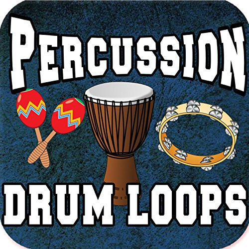 One Hit Tambourine Percussion Sample