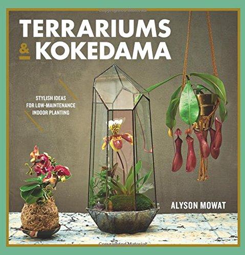 Terrariums & Kokedama: Stylish ideas for low-maintenance indoor planting