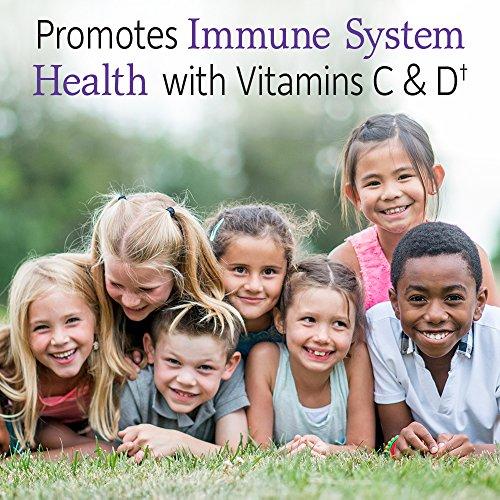 Garden of Life Microbiome Formula Organic Kids+ – 30 Kautabletten I Kinder ab 4 Jahre I Probiotika I 14 probiotische Stämme I Vitamin C & D I Vegetarisch