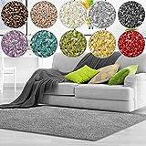 casa pura Shaggy Teppich Bali | Weicher Hochflor Teppich für Wohnzimmer, Schlafzimmer und Kinderzimmer | mit GUT-Siegel | Verschiedene Größen | viele Moderne Farben (100 x 150 cm, grau)