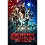 Stranger Things Poster (60,96 x 91,44 cm)