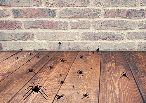 Halloween Spinnen, Set 25Vinyl Aufkleber