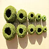 #10: 6cm : Hot Sell Fleshy Flowerpot Dyeing Moss Home Furnishing Micro Landscape Gardening Moss Ball Pot DIY Material Home Decoration