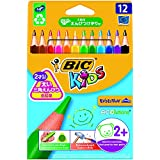 Bic 8297356Dry Marker crayons Case WF, WV Dry - Best Reviews Guide