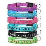 Amakunft Reflektierendes Hundehalsband, personalisierbar mit Namen und Telefonnummer, für Hunde und Katze