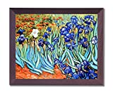 Vincent Van Gogh Blume Les Iris Bild Gerahmter Kunstdruck