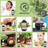 Huile De Menthe Poivrée 100% Naturelle Essentielle Pure 100Ml - Huile D'Menthe - Mentha Piperita - Inde - Massage