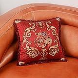 RllKY petit coussin de support lombaire coussin oreiller canapé Chorhaupt,Rot,50X50cm