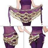 Dioche Cintura di Danza del Ventre, Cintura di Danza Orientale Cintura con Paillette di Danza del Ventre con 328 Pezzi in Oro(Violet)