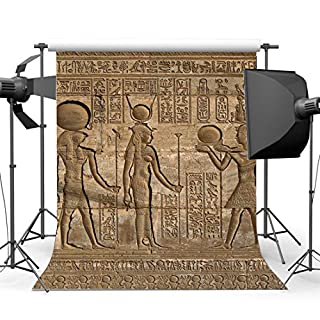 Sunny Star Vinyl 3X5FT Shabby Egypt Backdrop Old Egyptian Mural Painting Backdrops Ancient Pharaoh and Hieroglyphics Photography Background for Person Culture Historic Tourism Photo Studio Props YX708