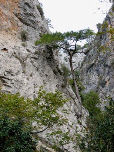 Preisvergleich Produktbild Lais Puzzle Türkei - Alanya - Sapadere Canyon 1000 Teile