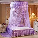 Pueri Bett Baldachin Betthimmel Runde Dome Prinzessin Hanging Mosquito Net (Lila)